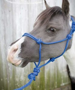 Equi-Sky Mini Rope Halter With Lead - 12 Pack Assorted Colors